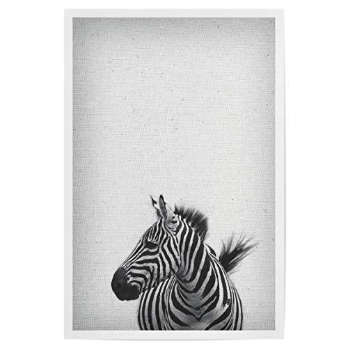 Bild Zebra-Streifen Zebra-Plakat Afrika-Plakat artboxONE Poster 30x20 cm Natur Zebra 13
