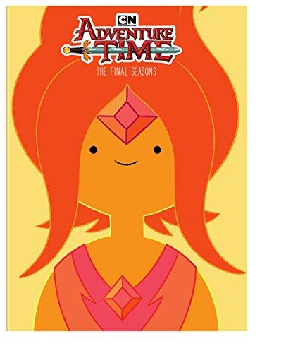 Adventure Time: Final Seasons (4 Dvd) [Edizione: Stati Uniti]