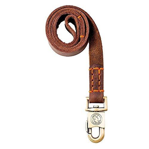 Rantow Laisse de Dressage pour Chiens Moyens ou Grands Chiens 1 Pouce Large et 90 cm, 120 cm et 150 cm (120cm)