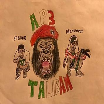 AP3 Taliban Bandits