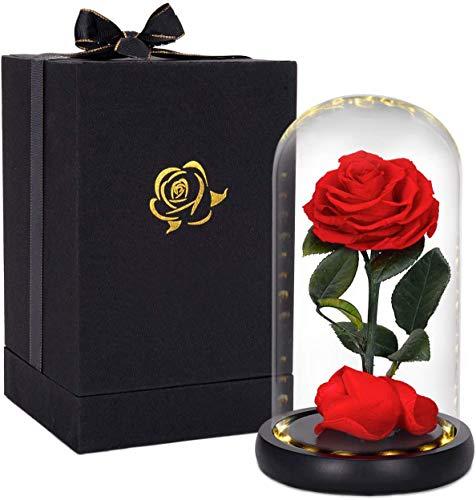 HelaCueil Die Schöne und das Biest Rose Ewige Rose im Glas - with LED Light and Gift Box Muttertagsgeschenk (Echte Rose/Die Schöne und das Biest)