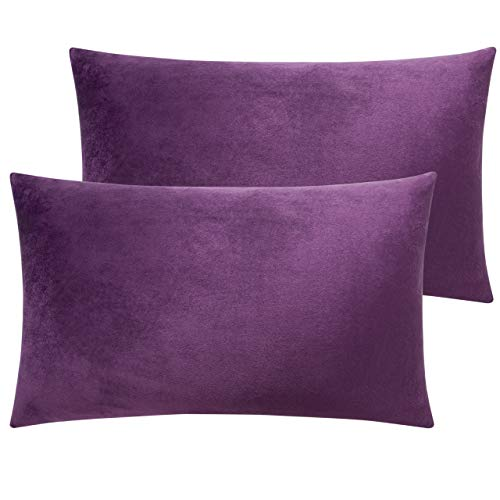 NTBAY Zippered Velvet Queen Pillowcases, 2 Pack Super Soft and Cozy Luxury Solid Color Pillow Cases, 20 x 30 Inches, Purple