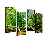 4 Piece Canvas Wall Art-Beautiful fishes swimming...