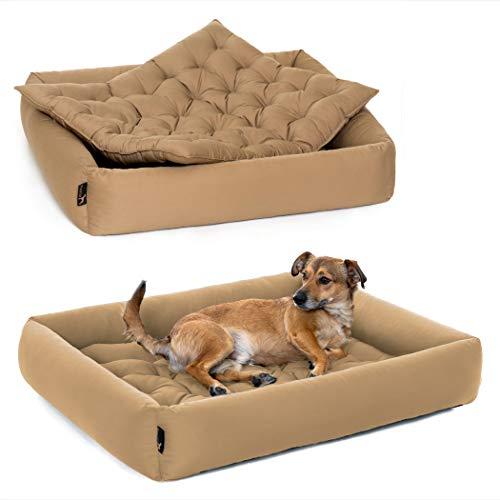 Pointer | Hundebett mit Hundekissen - orthopädisch, waschbar, bequem (L - 80x70 cm, Beige)