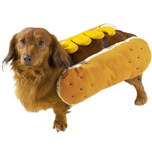 """Casual Canine Hot Diggity Dog with Mustard Costume for Dogs, 14"""" Small/Medium"""