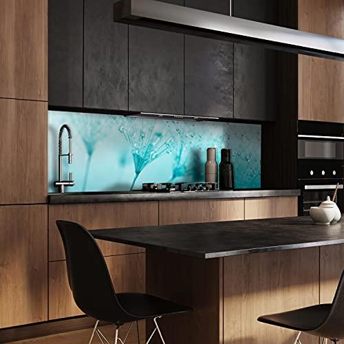 wandmotiv24 Küchenrückwand Pusteblume Türkis 160 x 50cm (B x H) - Acrylglas 3mm Nischenrückwand, Spritzschutz, Fliesenspiegel-Ersatz, Deko Küche M0347