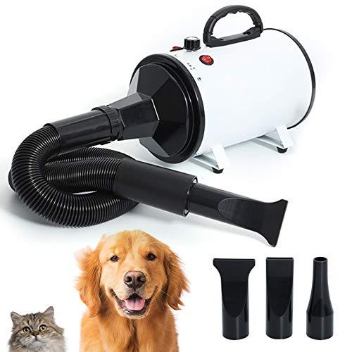 2800W Power Levelless Haustier Hund Katze Hundefön Trockner,2200W Pet Haartrockner Hundepflege Schnell Luftentfeuchter Einstellbarer Windgeschwindigkeit Mit 3 Düsen,Weiß