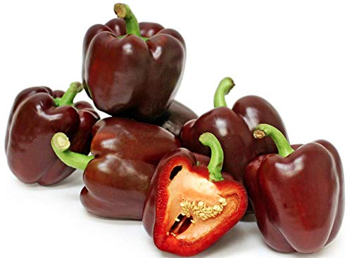 Chocolate Beauty Sweet Bell Pepper Seeds, 20 Heirloom Seeds Per Packet, Non GMO...