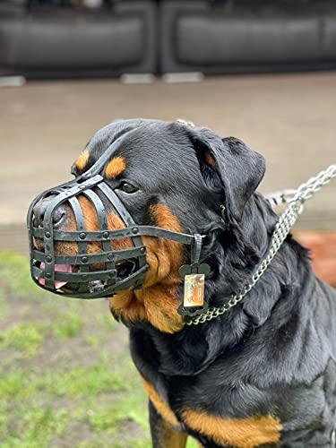 Champion Muselière en cuir pour rottweiler mastiff et autres chiens similaires