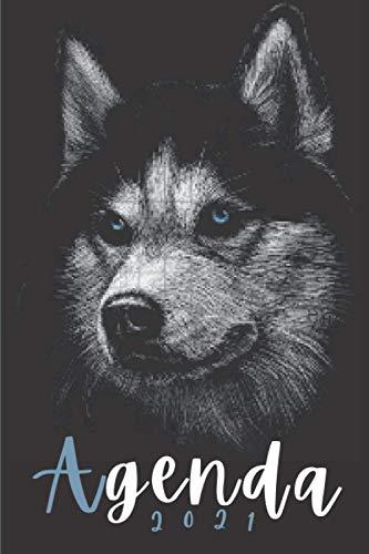 Agenda 2021 lobo: Agenda 2021 semana vista lobos - una...