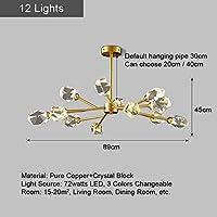 MYERZI 廊下照明 豪華 居間の寝室のダイニングルームのキッチン装飾現代の高級LEDクリスタル純銅天井屋内照明 (Lampshade Color : 12 Lights)