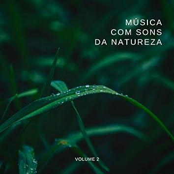 Música Com Sons da Natureza, Vol. 2