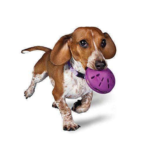 PetSafe Busy Buddy Twist 'n Treat Dispensing Dog Toy - Extra Small, Small, Medium, Large