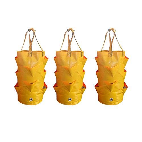 Nuodwell Lot de 3 sacs de plantation à suspendre 3 gallons pour jardinage multi-bouche 10 trous pour pots de fleurs pour piments, fraises et herbes jaune