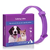 Sansoak Adjustable Anxiety Dog Cat Calming Collar, Nature Safe Waterproof Long Lasting Claming Effect Pet Anxiety Relief 24inch/62cm,1 Pack (15inch/38CM)