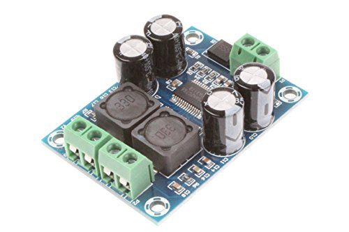 NOYITO Mini TPA3118 Digital Audio Amplifier Board Class D Mono 60W DC8-24V Power Supply