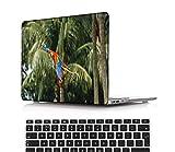 NEWCENT MacBook Air 13' Funda,Plástico Ultra Delgado Ligero Cáscara Cubierta EU Teclado Cubierta para Antigua MacBook Air 13 Pulgadas 2010-2017 Versión(Modelo:A1466/A1369),SX-YUMAOXL0264