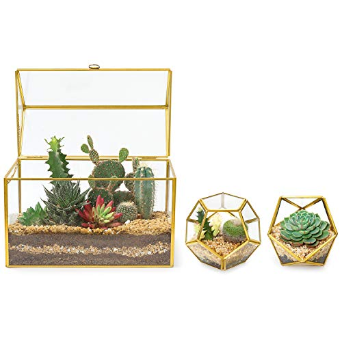 Mkono Glass Geometric Greenhouse Terrarium, 3 Pack Tabletop Large House Shape Planter with Lid and Mini Plant Terrarium Container DIY Display Box Decor Gift for Succulent Cacti Air Plants Orchid, Gold