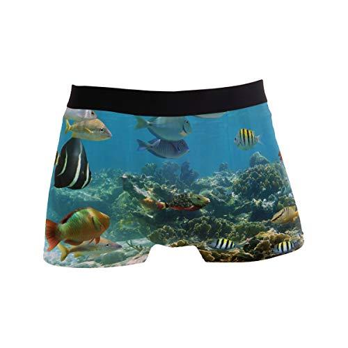 Josid Herren Badehose Boxershorts, Strandunterwäsche, schnell trocknend, schöne Fische - - Large