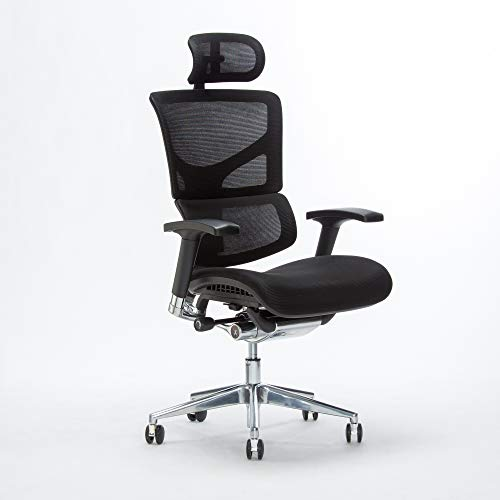 X Chair X3 Office Desk Chair