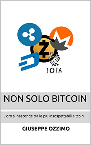 robinoh bitcoin scurt