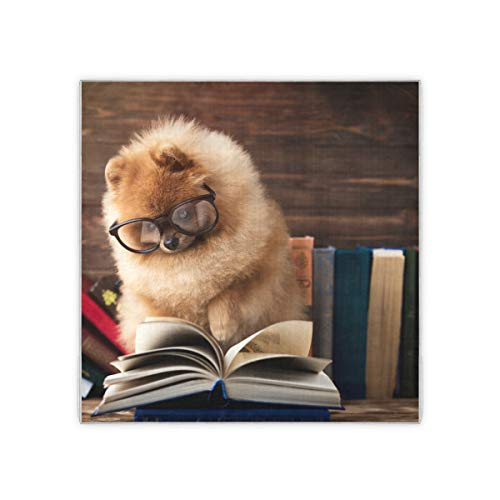 Cleveres pommersches Hundebuch Hundegeschützte Halstuchschals für Frauen Damenmode Muster Haarbandanas für Frauen Gefühl Damenschal 35x35 Zoll