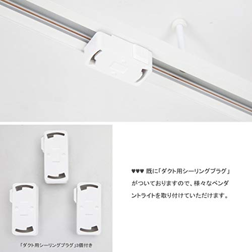 BEAULIGHTレール照明天井照明器具ライティングダクトレール1.1mスポットライト取り付け簡易型スライドコンセント配線ダクトレール角度調整可能配線ダクトレール用プラグ(白,レール+レール用プラグ)