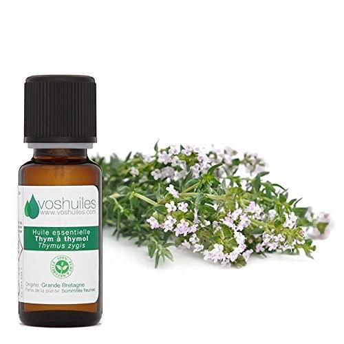 Huile Essentielle de Thym à Thymol - 100% Pure et Naturelle - HEBBD - Diluer dans une Huile Végétale pour Massage - 10 ml - Aromathérapie - Aromathérapie - VOSHUILES