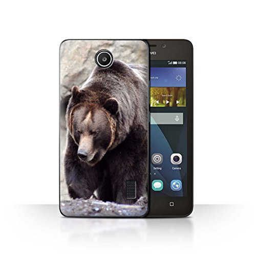 Hülle Für Huawei Y635 Wilde Tiere Bär Design Transparent Ultra Dünn Klar Hart Schutz Handyhülle Hülle