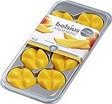 8 x Bolsius Creations Aromatic Duftwachs Aroma Wachs Blätter Wax Melts Aroma Melts - Exotische Mango