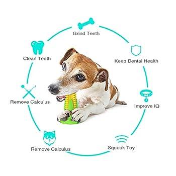 Jouet à mâcher pour chien en caoutchouc naturel indestructible avec couineur pour garder ses dents propres