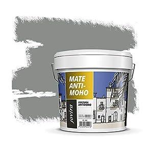 PINTURA ANTIMOHO, evita el moho, resistente a la aparición de moho en paredes, aspecto mate. (20 kg, GRIS OTOÑO)