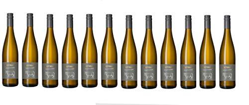 Metzger Prachtstück Weissburgunder Chardonnay Cuvée Weißwein Wein trocken Deutschland aus der Pfalz (12 Flaschen)