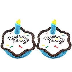 Dog Birthday Cake 2 Set Plush Squeaky Toy By BINGPET