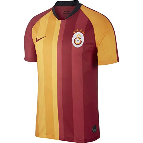 Nike Herren Galatasaray Trikot, Red/Pepper Red, L, AJ5537