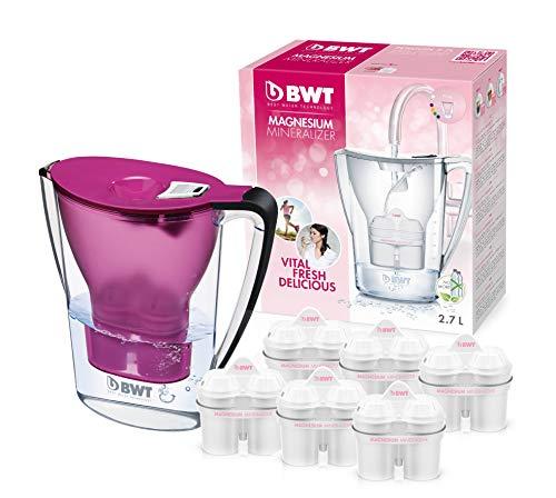 BWT Wasserfilter mit Filterset 6/12, polymere Kunststoffe Modern 6 dunkelviolett