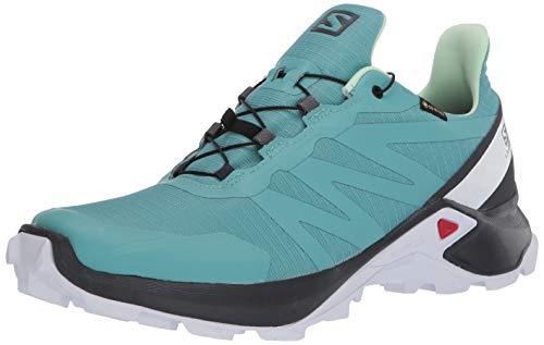 Salomon Damen Shoes Supercross GTX Laufschuhe, Mehrfarbig (Meadowbrook/Ebony/Patina Green), 41 1/3 EU