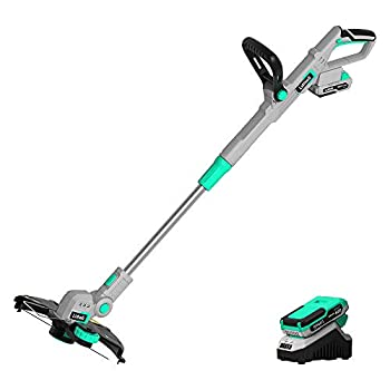 Litheli 20V Cordless String Trimmer,12-Inch Battery Powered Grass Trimmer & Wheeled Edger Automatic Line Feed 2.0Ah Battery and Charger for Grass Trimming/Edging Lawn and Garden Care