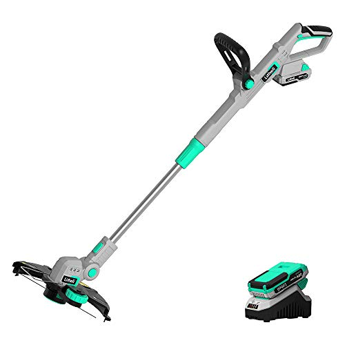 Litheli 20V Cordless String Trimmer,12-Inch Battery Powered Grass Trimmer & Wheeled Edger, Automatic Line Feed, 2.0Ah Battery and Charger, for Grass Trimming/Edging, Lawn and Garden Care