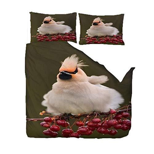 IJBSDJI Superking Duvet Covers Peacebird,3D Bedding Duvet Printed Quilt Cover With Zipper Soft Microfiber Bedding