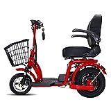 DOS Tricycle électrique de Scooter de Mobilité à 3 Roues 350W 15AH Récréatif Nouveau Modèle Puissant E-Scooter