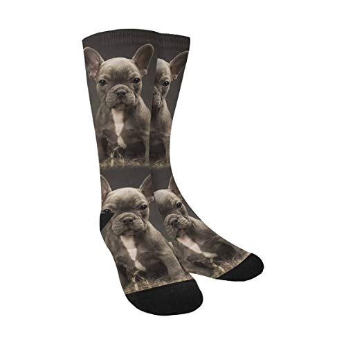 InterestPrint Baby French Bulldog Cute Puppy Sublimated Crew Socks Unisex Athletic Socks for Men Women