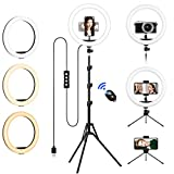 Ring Light with Tripod Stand & Phone Holder Tall, 12.6 inch Selfie Ring Lights for Makeup, Live Streaming, Tiktok, YouTube Video, Dimmable LED Circle Light with Remote (Total Height: 187 cm/73.6')