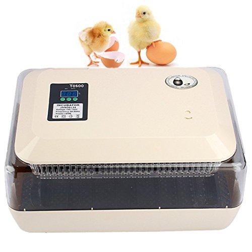 Incubadora del Huevo volteo digital automatico con Control de Temperatura,24 Huevos