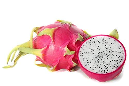 MEIGUISHA Gartensamen-Drachenfrucht Kaktus Saatgut schnellwüchsiger Fruchtsamen bio Obst mehrjährig,essbare süße Fruchtfleisch,exotische Samen für Obstgarten (20,Weiß)