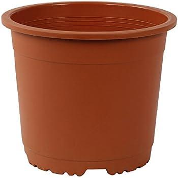 CAPPL Plastic Round Pot,12 Pots,10 Inch(Terracotta)