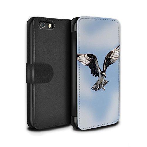 STUFF4 PU Pelle Custodia/Cover/Caso/Portafoglio per Apple iPhone 5/5S / Falco Pescatore / Uccello Rapace disegno