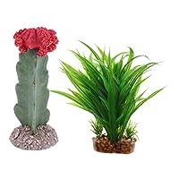 B Blesiya プラスチック植物 人工植物 人工水草 クアリウム内装 水槽/爬虫類 オーナメント 2個セット