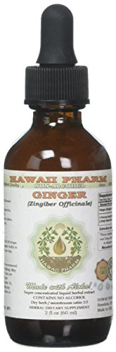 Ginger Alcohol-FREE Liquid Extract, Organic Ginger (Zingiber officinale) Dried Root Glycerite 2 oz