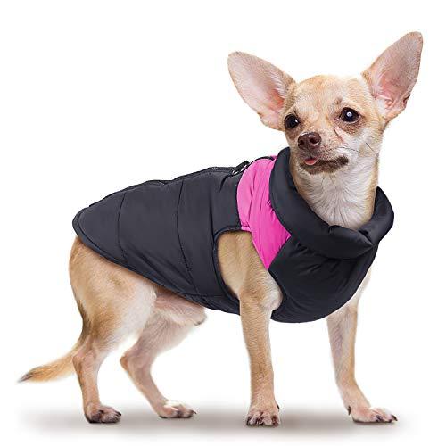 Vestiti caldi del cane Gilet di cotone impermeabile imbottito Piumino invernale giacca Cappotti Pet Suit sci all'aperto per cane di piccola taglia - rosaXS